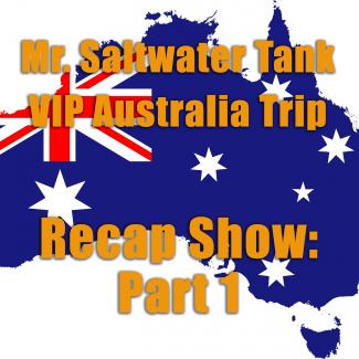 2018 Mr. Saltwater Tank VIP Trip Recap