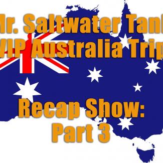 2018 Mr. Saltwater Tank VIP Trip Recap Part Three